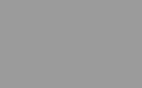 Gris (RAL 7004)